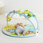 Skip Hop Baby/Toddler The Amazing Arch Gym