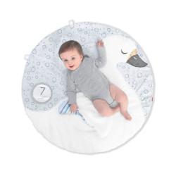 Skip Hop Little Swan Playmat