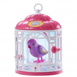 Small Live Pets Birds With Cage, Multicolored