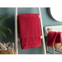 Daily Microcotton Towel - Red
